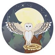 Barn Owl on a Tree Stump Stock Illustration