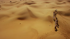 Aerial drone of a convoy of camels with owners across desert sand Stock Footage