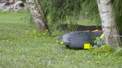 The moving automower on the green ground Stock Footage