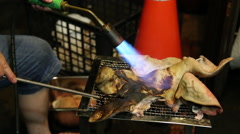 Removing hair from baby pig using blow torch Stock Footage