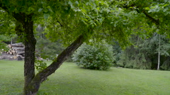 The green lawn outside the yard Stock Footage