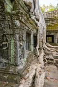 Ta Prohm temple (Rajavihara), Angkor, UNESCO World Heritage Site, Siem Reap - stock photo