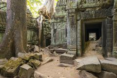 Ta Prohm temple (Rajavihara), Angkor, UNESCO World Heritage Site, Siem Reap Stock Photos