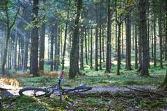 Mountain bike lying on dirt track in Forest of Dean, Bristol, UK - stock photo