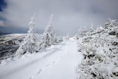 Svidovets Mountain Ridge, Carpathian Mountains, Ivano-Frankovsk Region, Ukraine Stock Photos