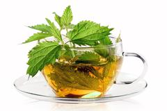 Fresh stinging nettle tea Stock Photos