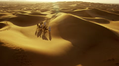 Aerial drone of camel train travelling across a Middle Eastern desert - stock footage