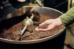 Man's hand holding coffee beans from roaster - stock photo