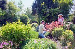 Couple tending to garden - stock photo