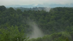 Fog and Mist with Hardwoods Forest Stock Footage