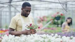 4K Portrait smiling worker in a garden center Stock Footage