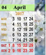 Calendar for April 2017 with blooming cherry tree Stock Illustration