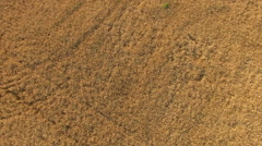 Aerial Flying Over Farm Land In Summer Stock Footage