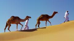 Camel caravan train travelling across a Middle Eastern desert Stock Footage