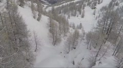 Aerial of bare trees on snowcapped mountain Stock Footage