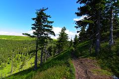 Jeseniky mountains in nice summer day - stock photo