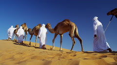 Camel caravan train travelling across a Middle Eastern desert Stock Footage