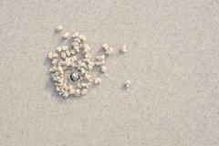 sand and the crab hole - stock photo