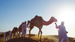 Arab Bedouin males in traditional dress leading camels through hot desert Stock Footage