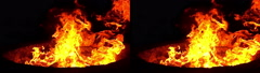 3D Stereoscopic Firewood Set 07 Side by Side 1000fps Slow Motion - stock footage
