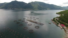 Aerial view at the Kotor bay (Boka Kotorska) with mountains with fish farm Stock Footage