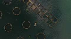 Structure of fish farm, aerial view. Montenegro - stock footage