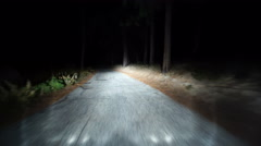 4K Driving Plates Forest Night 05 Front View Arkistovideo