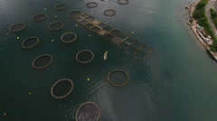 Coastal fish farm is in Kotor bay (Boka Kotorska). Montenegro Stock Footage