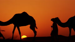 Aerial drone of Arab males in traditional dress leading camels through desert Stock Footage
