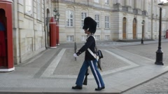 Royal Danish Gurads Stock Footage