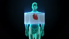 Zooming front body and scanning heart. Human cardiovascular system, X-ray light. Stock Footage