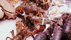 Live lobsters and crabs, stir claws. The famous la Boqueria market in Barcelona Stock Footage