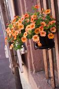 decorative flowers house facade - stock photo