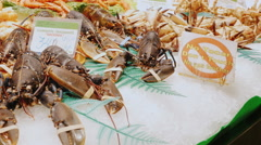 Barcelona, Spain - Live lobsters and crabs, stir claws. The Stock Footage
