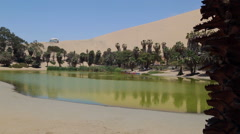 Oasis surrounded near Ica, Peru Stock Footage