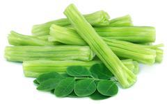 Edible moringa oleifera with green leaves - stock photo
