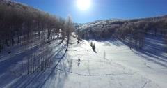 Flying backwards above the forest in the Altai mountains. Stock Footage