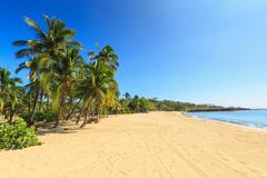 Golden beach and palm tree's at Hulopo'e Beach Park, Lanai Island, Hawaii, USA - stock photo