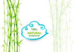 Bamboo asian backdrop Stock Illustration