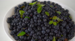 Pile of wet bilberries with leaves on a plate 4K close up ProRes dolly video - stock footage