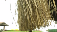 Thatched umbrellas on beach Stock Footage