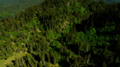 Aerial view of remote wilderness of Kachemak Bay Alaska USA Stock Footage