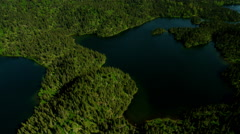 Aerial view of forest wilderness and Kachemak Bay Alaska Stock Footage