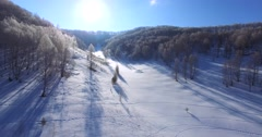View of winter forest in the Altai mountains Stock Footage