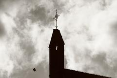 Silhouette of a steeple with flying pigeon Stock Photos