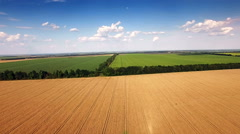 Aerial view of agrarian fields. - stock footage