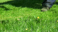 Cutting the grass with the mower. Stock Footage