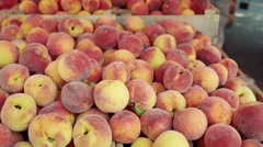 Crates filled with fresh peaches at farmers market - stock footage