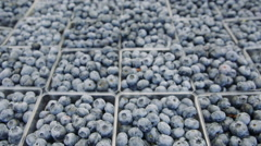 Pints of fresh blueberries at farmers market Stock Footage