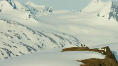Aerial view of mountaineers on a snow covered mountain in Alaska America Stock Footage
